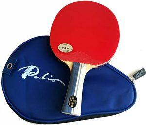 Palio 2 paddles
